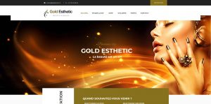 THALES IT - Réalisation sites Internet - Gold Esthetic