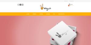 THALES IT - Réalisation sites Internet - Agence WEB - Wizy
